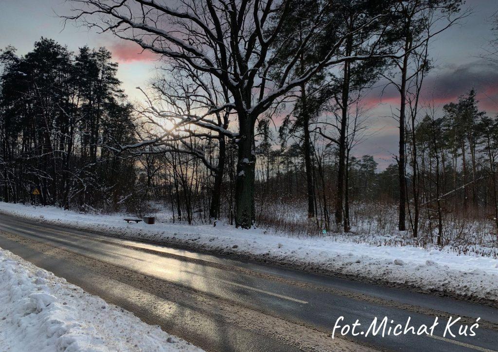 zima na pierwszym planie asfaltowa ulica dalej drzewa na tle nieba z różowymi obłokami