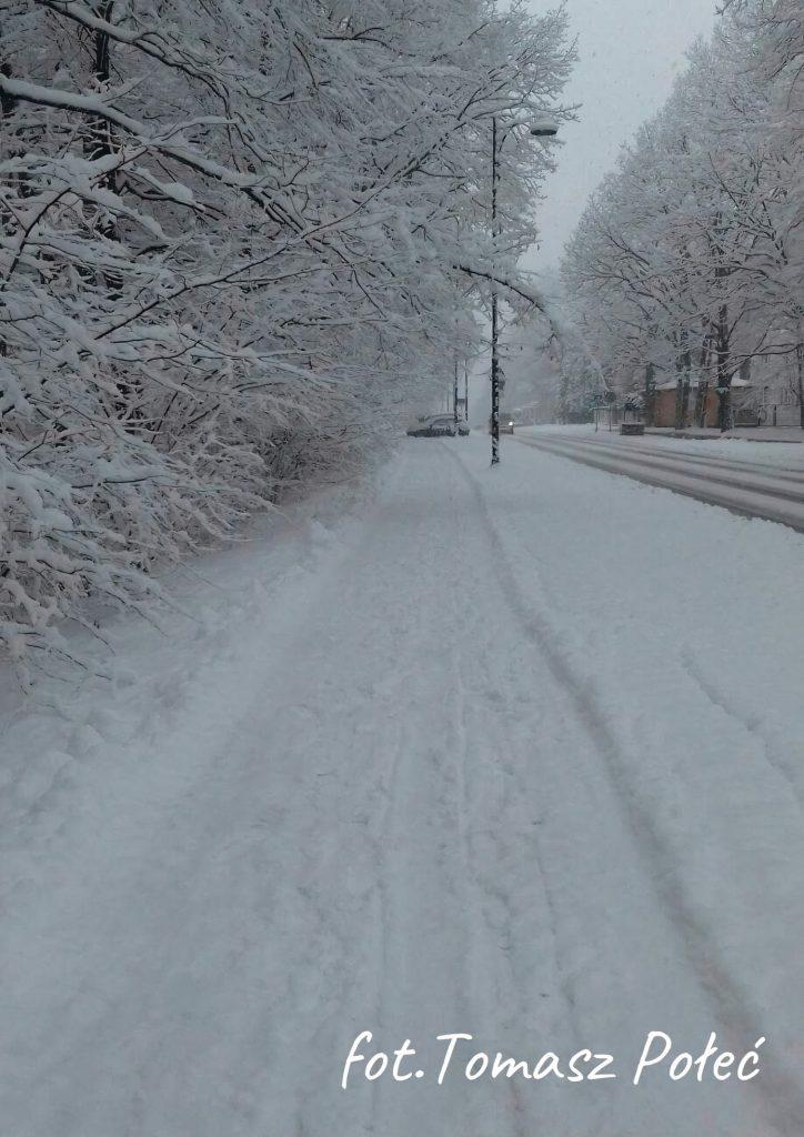 zima widok na ul. Fabryczną drzewa, ulica i chodnik w śniegu w tle latarnia