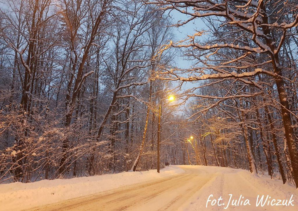 zima widok na ul. fabryczną w Poniatowej na środku droga po bokach las w tle latarnie zapada zmrok