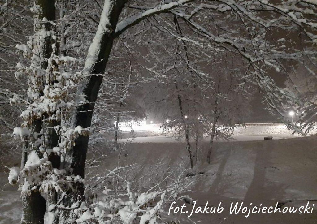 zaśnieżone drzewa w parku w tle oświetlony napis Poniatowa