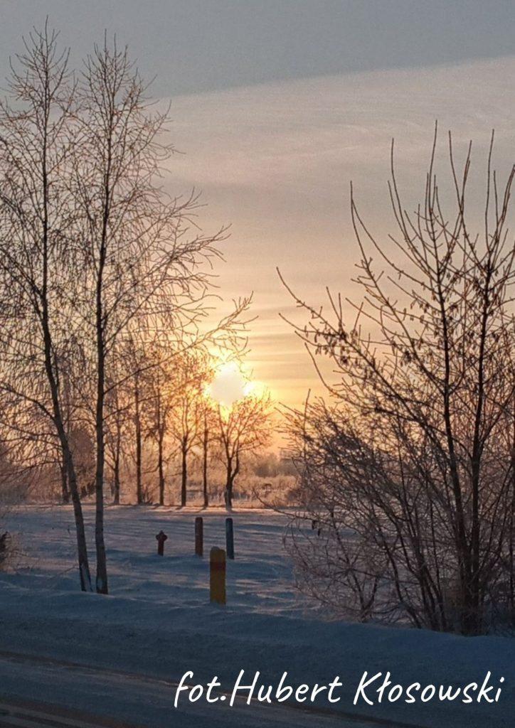 zimowy krajobraz wschód słońca drzewa i krzewy na środku małe słupki i hydrant