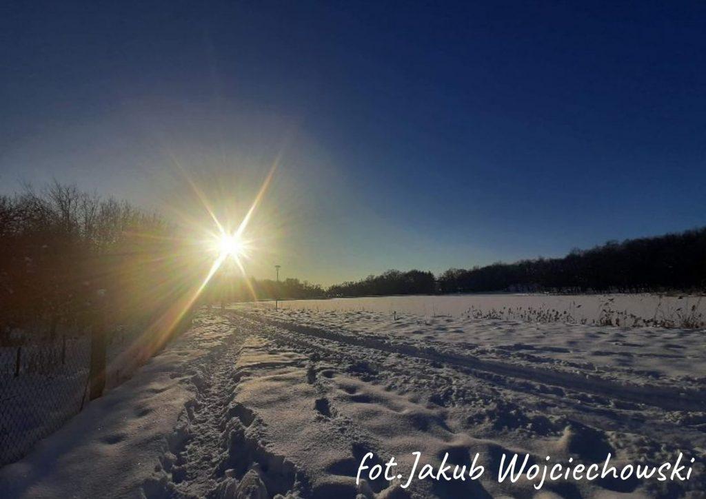 zima pole w śniegu w oddali drzewa oraz ostre słońce