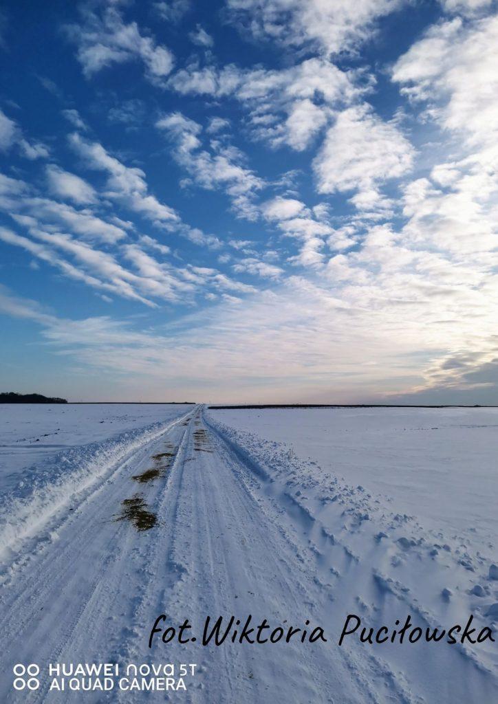 pola w sniegu na środku zaśniezona droga niebieskie niebo z białymi obłokami